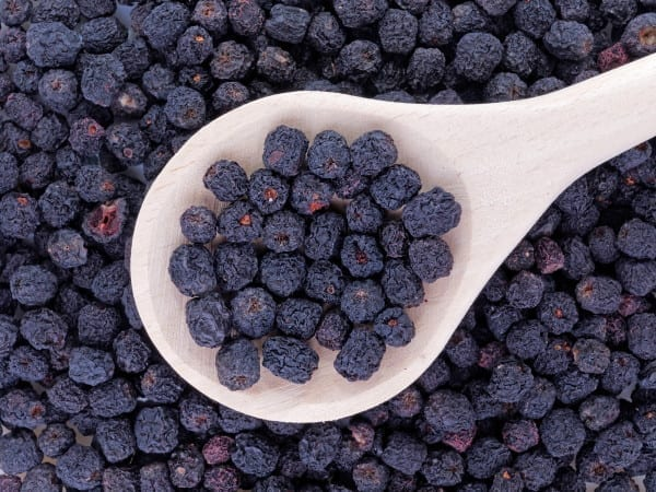 Aronia-Beeren oder Apfelbeeren sind das neue Superfood