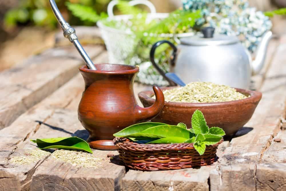 Stevia wurde schon von den Ureiwohnern Paraguays zum Süßen von Mate-Tee genutzt