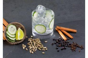Gin-Tasting Stuttgart