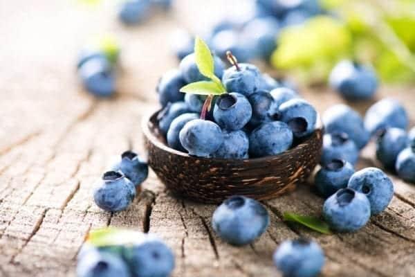 Blaubeeren enthalten mehr Antioxidantien als Acai-Beeren