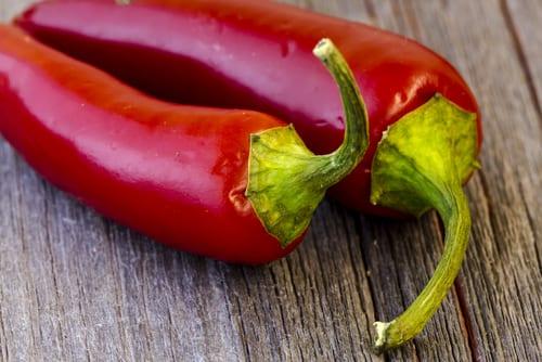 Rote, gereifte Jalapenos für Chipotle