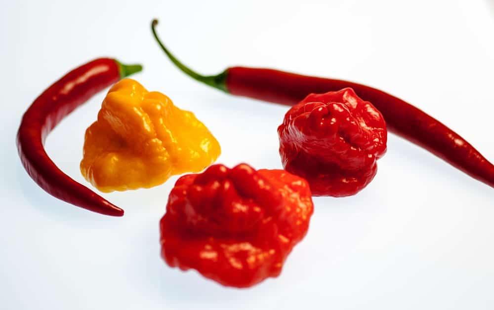 schärfste chili der welt tabelle
