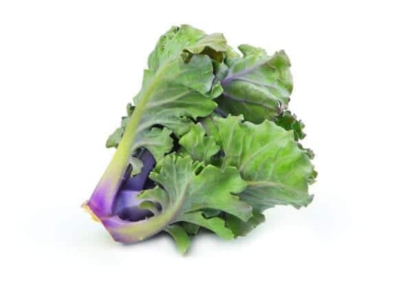 Kalettes oder Flower Sprouts sind eine Kreuzung zwischen Rosenkohl und Grünkohl