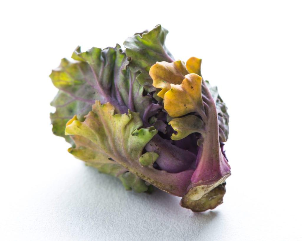 Flower Sprouts oder Kalettes schmecken angenehm nussig und sind in 4 Minuten gar