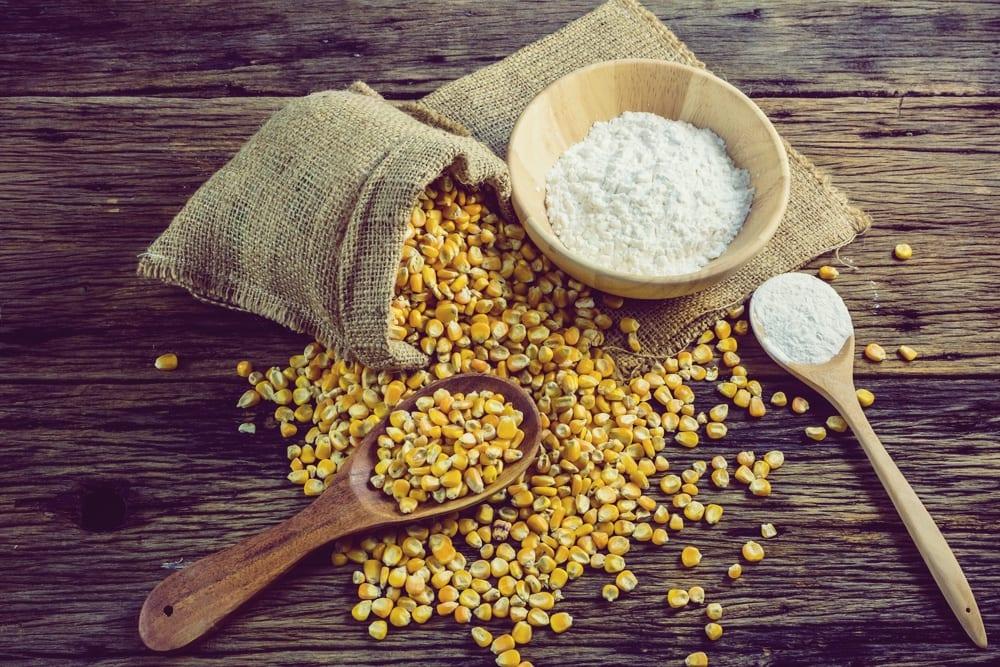 Mehlsorten - Maismehl- Entdeckermagazin - Miomente