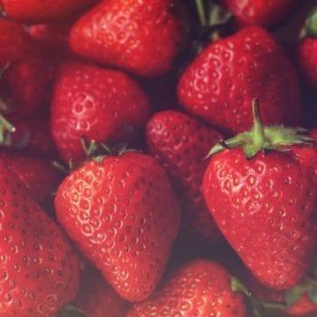 Rezept für Mini-Obst-Törtchen - Heidelbeeren   Miomente Entdeckermagazin
