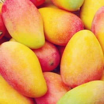Rezept für Mini-Obst-Törtchen - Mango   Miomente Entdeckermagazin