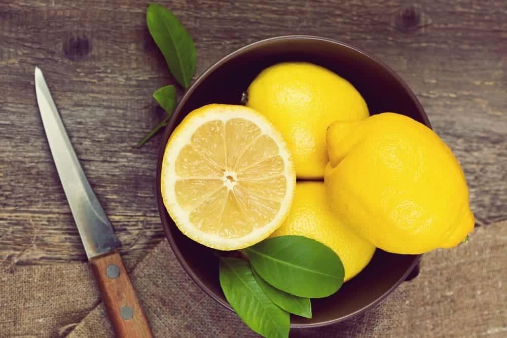 Rezept Salzzitronen - Messer mit Zitronen - Entdeckermagazin - Miomente