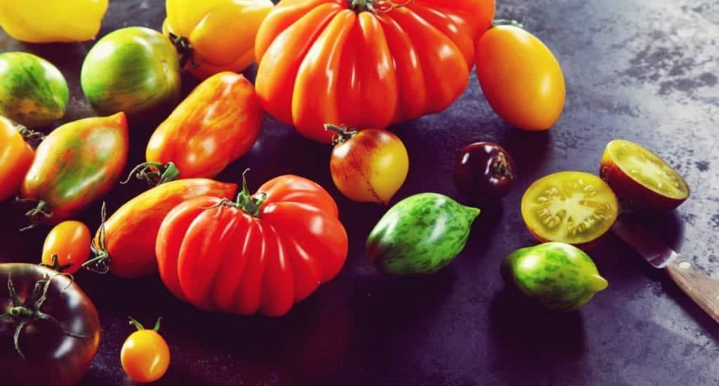 Tomatensorten - Entdeckermagazin - Miomente
