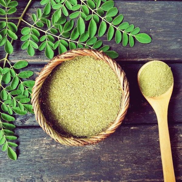 Was ist Moringa - Neues Superfood - Entdeckermagazin - Miomente