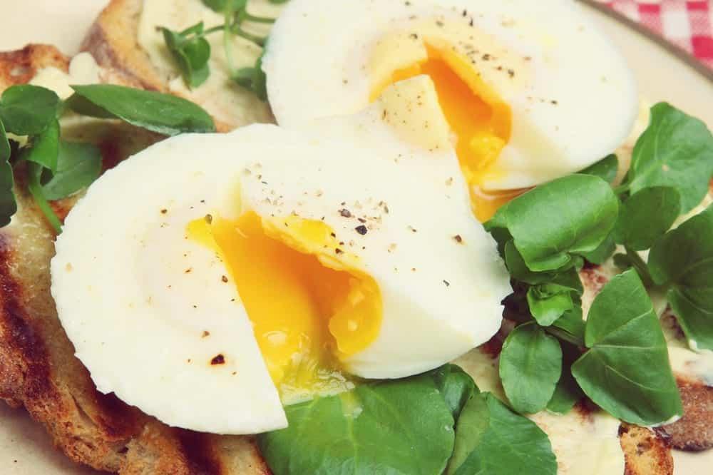 Wie pochiere ich ein Ei? Eine Schritt für Schritt-Anleitung - pochiertes Ei auf Brot | Entdeckermagazin Miomente