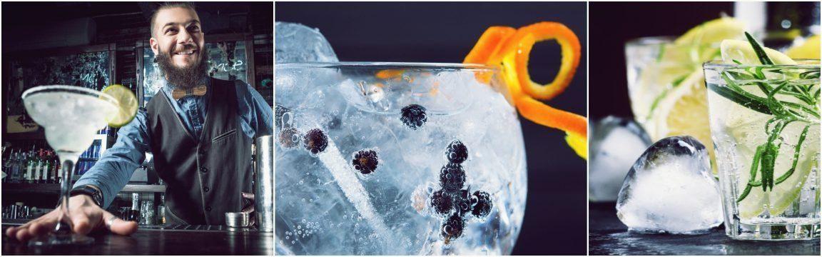 Gin-Tasting von Miomente