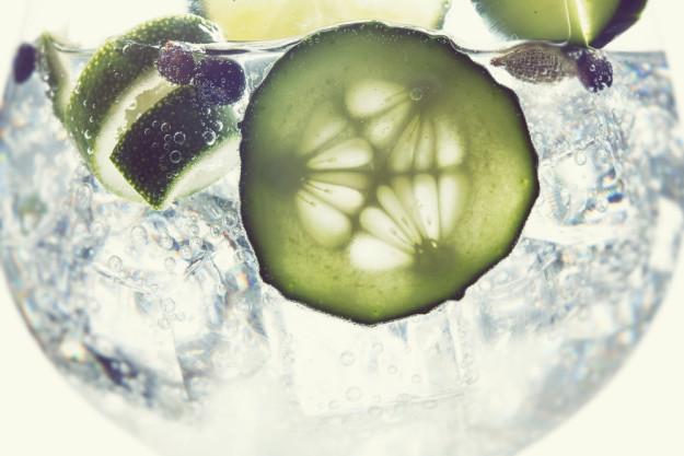 Gin-Tasting Köln –Schottischer Gin mit Gurkenscheiben und Wacholderbeeren