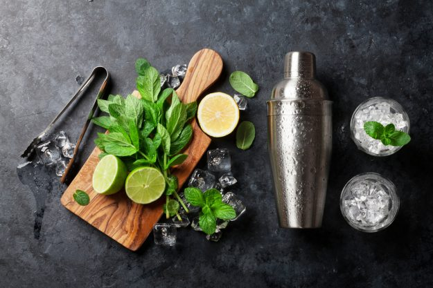 Cocktailkurs Köln – Zutaten für Mojito