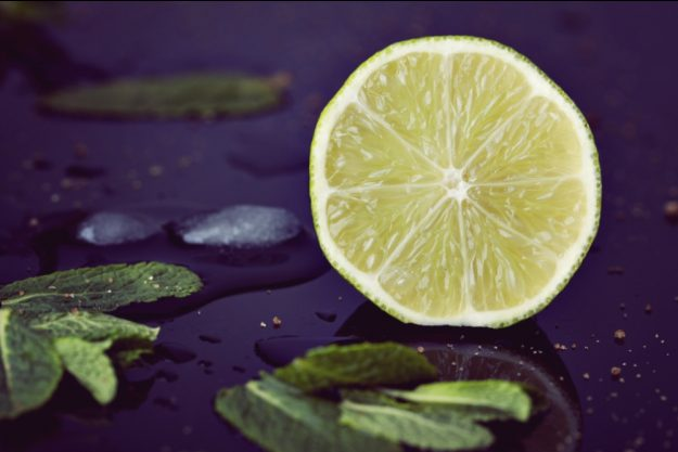 Gin-Tasting Köln –Limette