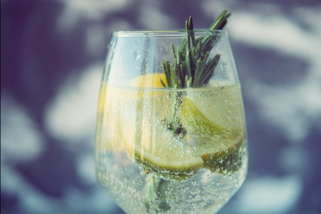 Geschenkgutschein Gin-Tasting – Gin Tonic mit Zitrone und Rosmarin