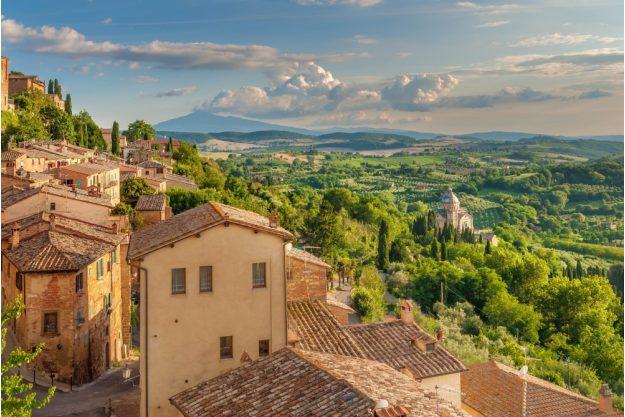 virtuelle Reise in die Toskana, Weinberge