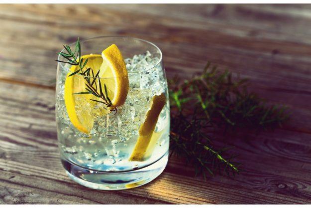 Cocktailkurs Frankfurt - Gin Tonic