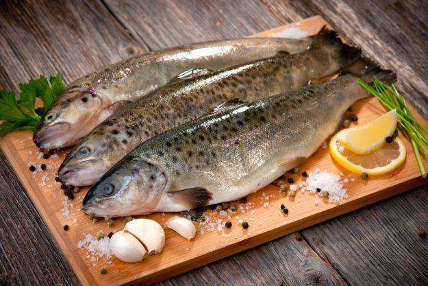 Fisch-Kochkurs Frankfurt - fangfrischer Fisch