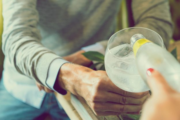 Gin-Tasting Frankfurt-Hofheim – Gin plus Tonic bei der Gin-Probe