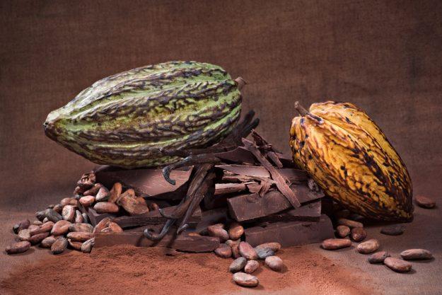 Pralinenkurs Frankfurt - Kakaobohnen
