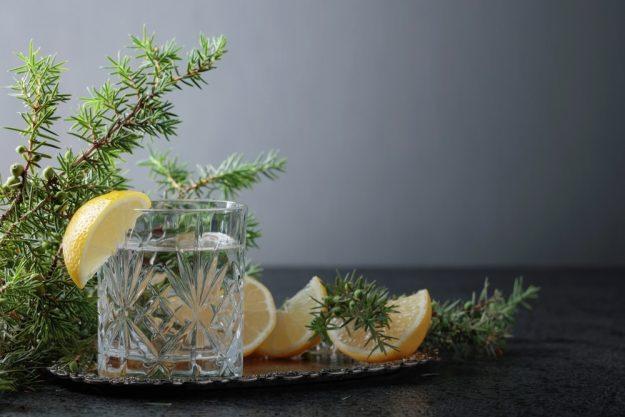Virtuelle Brennereiführung mit Gin-Tasting zu Hause – Berliner Gin