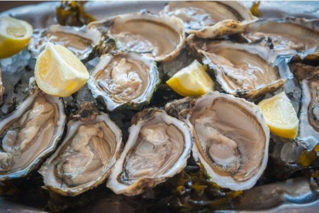 Französisch-Kochkurs Senden – Austern