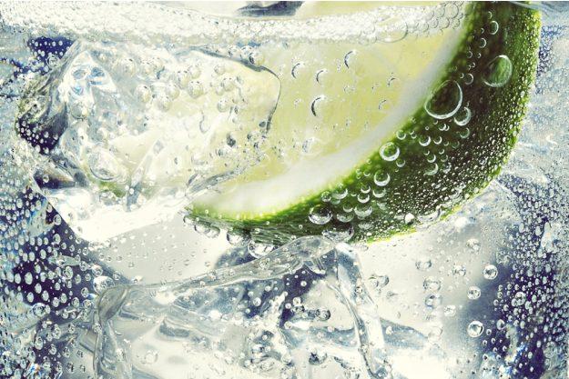 Gin-Tasting-Senden-Gin-Limette