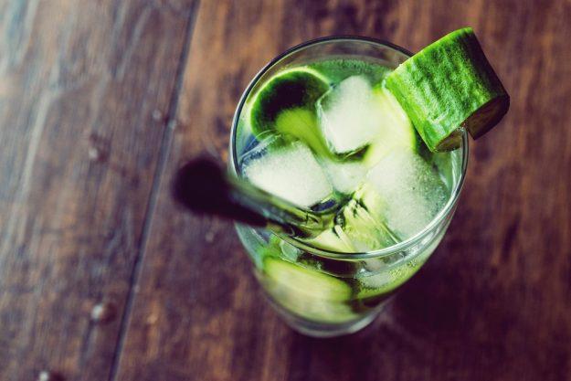 Gin-Tasting-Senden-Gin-Gurke