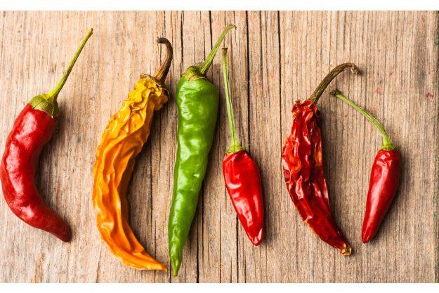 Mexikanischer Kochkurs Münster – Chilis