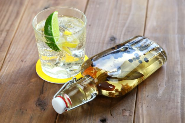 Gin selber machen Karlsruhe – selbst gemachter Gin