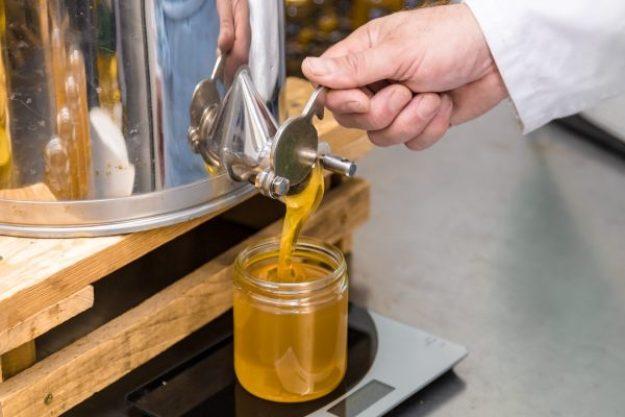 Honig-Verkostung – Honey