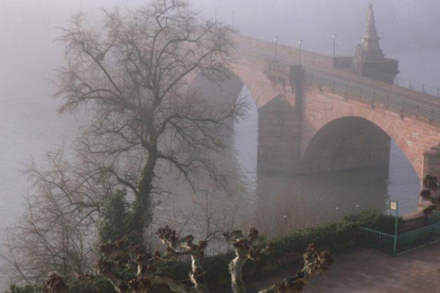 Kulinarische Stadtführung Heidelberg - Nebel in der Stadt