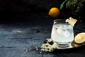 Ultimativer Gin