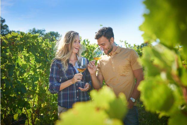Virtuelle Reise nach Slowenien Pärchen im Weinber