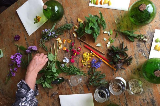 Gin selber machen Essen – Botanicals auf Tisch