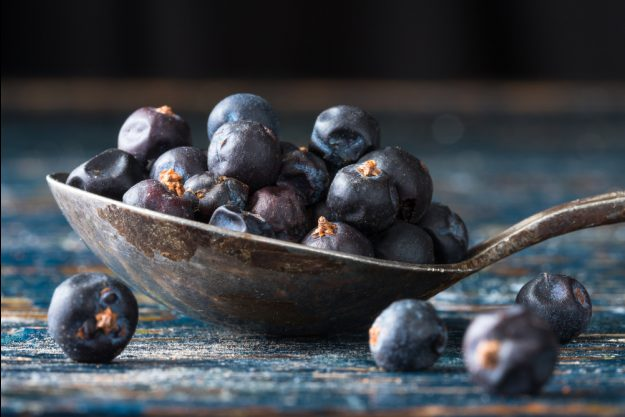 Gin selber machen Essen – Wacholderbeeren