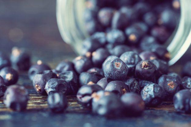 Gin-Tasting-Gutschein –Wacholderbeeren