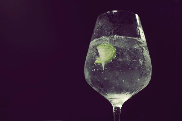Gin-Seminar Dortmund – Gin im Glas