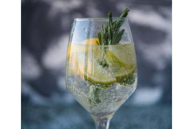 Gin-Seminar Dortmund – Gin-Drink