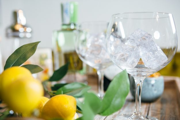 Gin-Tasting-AT-Home-Zitronen