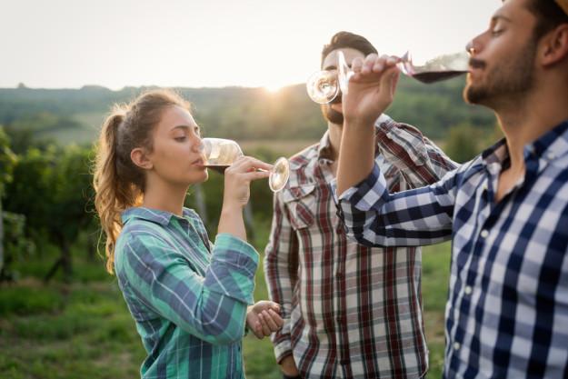 Weinprobe Stuttgart –Wein trinken