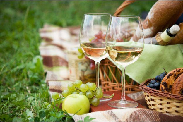 Firmenfeier mit Weinseminar in Ludwigsburg – Picknick mit Wein