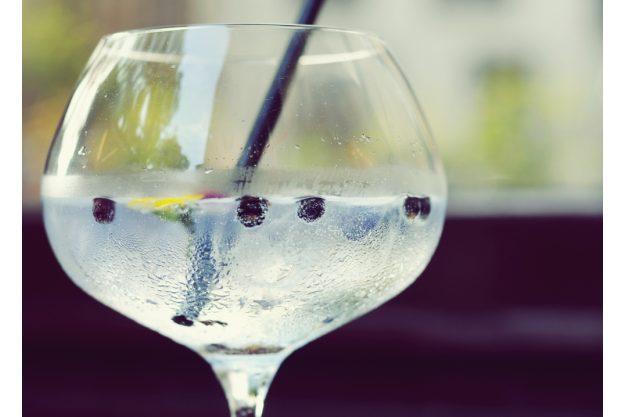 Gin-Tasting Stuttgart – Gin mit Wacholderbeeren und Zitronenzeste