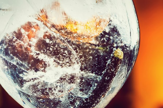 Gutschein Gin-Tasting – Gin mit Eiswürfeln