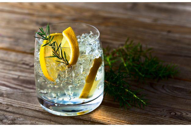 Cocktailkurs Berlin - Gin-Tonic mit Botanicals