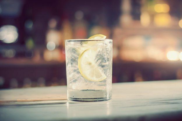 Gin-Tasting Berlin – fertiger Gin-Tonic mit Zitrone