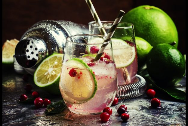 Gin-Tasting Berlin – Bombay Sapphiere Gin mit Cranberry