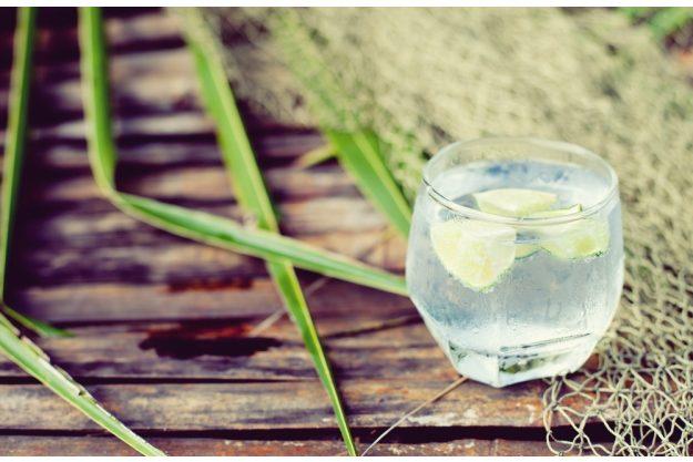 Gin-Tasting Berlin –Gin mit Tonic Water und Limette