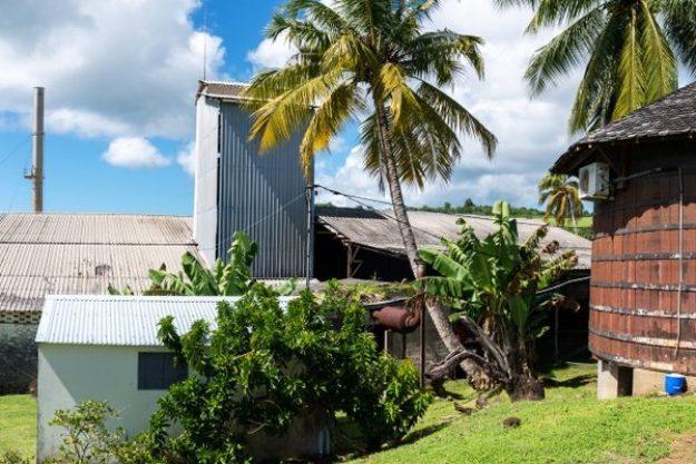 Rum-Tasting München –Rum Brennerei auf Mauritius